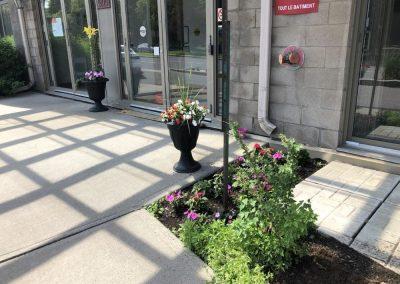 Fleurs à l'entrée de notre résidence à Montréal - Résidence Alexis-Nihon (Résidence à Ville St-Laurent)